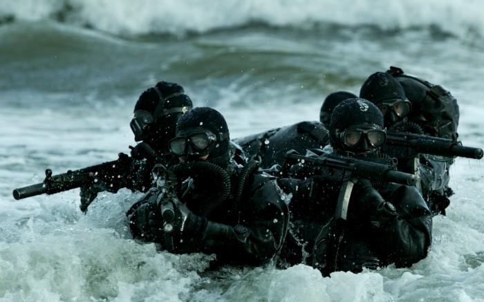 seal-navy-700x437